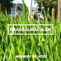 Grashalmzählen - MONKEY OF HOPE