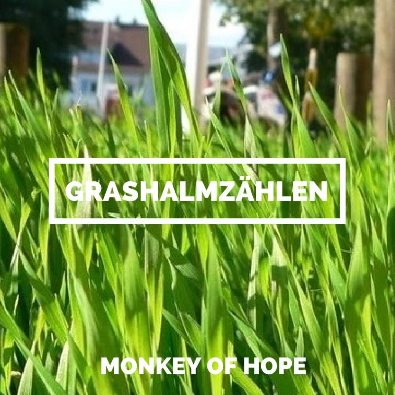 Grashalmzählen – Poetry